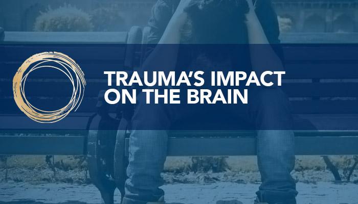 Trauma's impact on the brain- title slide